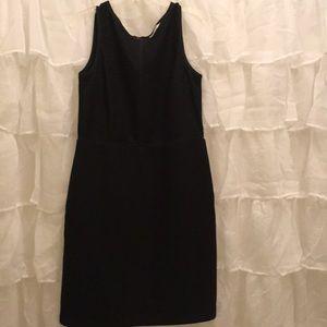 NWT Loft Black Dress